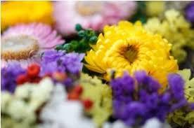 Image result for flower memorial cemetery