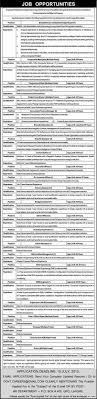 biostatistician job public sector organization job programme manager