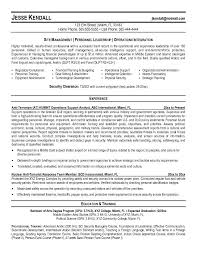 Example FBI Special Agent Resume   Free Sample
