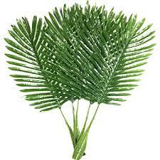 Buy <b>5</b> Pack <b>Palm Leaves Fake Faux Artificial</b> Plant <b>Leaves</b> Green ...