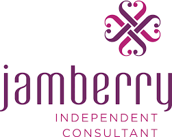 become an independent jamberry consultant plaid apple lifestyle