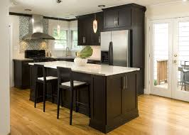 Remodelling Kitchen Kitchen Remodelling Your Home Decor Diy With Nice Fancy Kitchen