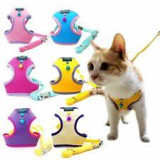 <b>Кожаные</b> шлейки и <b>поводки</b> для кошек - огромный выбор по ...