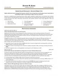 resume sample vp business development resume format examples resume sample vp business development sample business development resume laura smith proulx business development associate resume