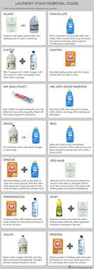 prevent stinky kitchen bin infographic laundry stain removal guide pre treat stubborn stains with