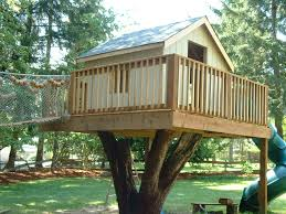 Tree House Plans   Girl Room Design Ideas Creative Tree House Design Ideas