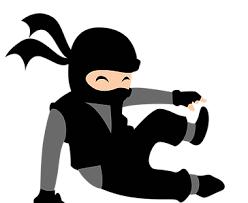 Image result for ninja zone