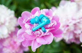 Обзор <b>HONOR Magic</b> Earbuds — сочные <b>наушники</b> с активным ...