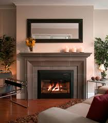Small Gas Fireplaces For Bedrooms Designs Small Living Rooms Indoor Fireplace Gucobacom