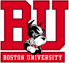testimonials mcdonough college consulting boston university