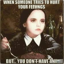 When someone tries to hurt your feelings, but you dont have any ... via Relatably.com