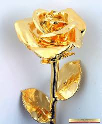 Image result for images of golden rose flower