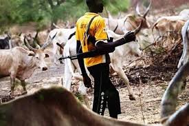 Image result for armed fulani herdsmen