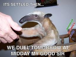 Polite Anteater | Animal Memes via Relatably.com