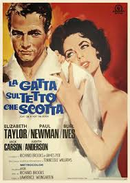 cat on a hot tin roof quotes like success cat on a hot tin roof italian poster
