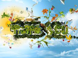 World Gratitude Day - The Bliss Blog