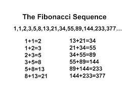 images?q=tbn:ANd9GcQhVBSjBO6vdDo2ckN6e9hk3Jo0q5FD3deuIWq4YkVEO1HlVLLs - Fibonacci Sequence - Facts and Trivia
