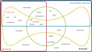 higher order thinking with venn diagrams  set edwards venn diagram classifying animals