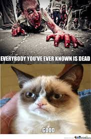 Cat Zombie Memes. Best Collection of Funny Cat Zombie Pictures via Relatably.com