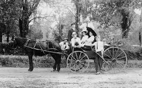 Image result for horse and carriage