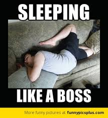 Sleeping Like a boss | Funny Pictures via Relatably.com