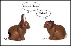 Image result for dog ate easter bunny
