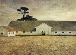 The Milking Barn II - Limited Edition of 20 Photography by Alexa ...