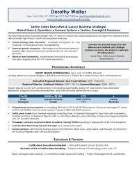 senior executive resume samplebr all material is copyrighted by the writing guru senior attorney resume