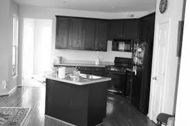 Black White Kitchen Designs Black Kitchen Cabinets Black Kitchen Cabinets Ideas Pictures Of