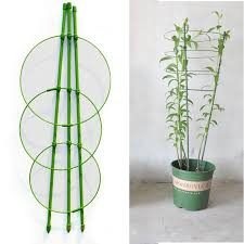 45cm Flower <b>Plants</b> Clematis <b>Climbing Rack</b> Support Shelf House ...