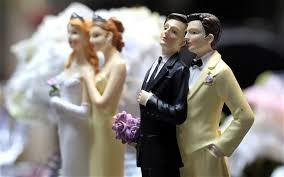 Risultati immagini per CEDU UNIONI GAY