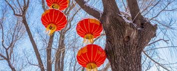 Lunar New Year   Winter City Edmonton