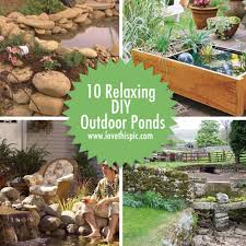 diy patio pond:     qq