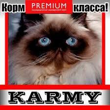 НОВИНКА! SPECIALIZED <b>корм</b> для кошек различных пород ...