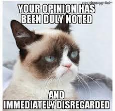 grumpy cat on Pinterest | Meme, Grumpy Cat Meme and High School ... via Relatably.com