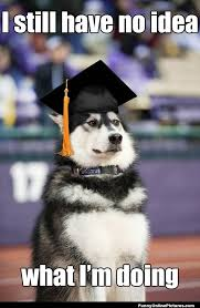 Graduation Dog - Funny Meme Picture via Relatably.com