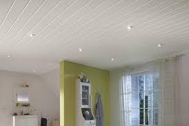 Реечный потолок: 100+ фото, примеры в кухне, ванной, туалете ...