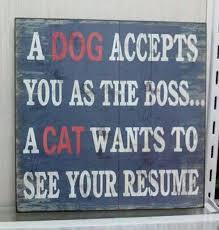 Ένας  σκύλος σε δέχεται......