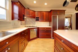 Different Kitchen Cabinets Kitchen Cabinets Wood Types Design And Decorating Ideas Wonderful