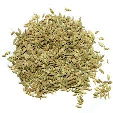 Image result for fennel image