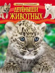 Купить детские книги озвученные и печатные в Набережных ...