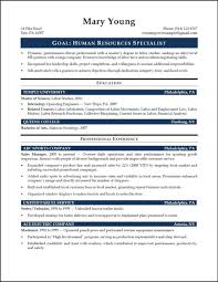 resume template resume skills section examples resumes sample for skills cover letter sample technical skills section resume format skills section resume skills for resume examples