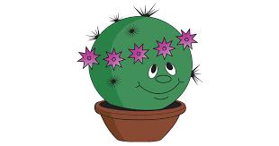 Cultural Pachypodium - может переведет кто? - <b>CactusLove</b>