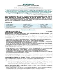 resume samples elite resume writing consumer insights resume sample provided by elite resume writing services
