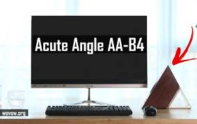 <b>Acute Angle AA</b>-B4 First REVIEW: You'll Never Guess What This Is!
