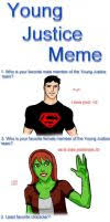DeviantArt: More Like Young Justice Meme by WendyDoodles via Relatably.com