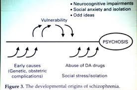 Genetic disorders  bipolar disorder research paper