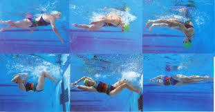 Image result for Pull Off The Perfect Swimmer's Flip Turn
