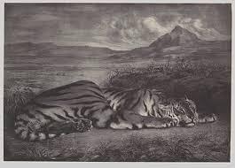 the print in the nineteenth century   essay   heilbrunn timeline    royal tiger