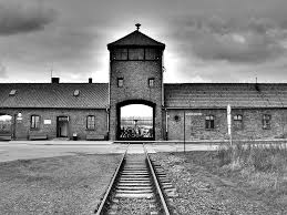 the question concerning technology  daniel goldhagen is mistaken why the technology of the holocaust mattered and still matters